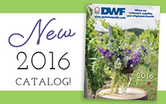 DWF Syndicate Catalog
